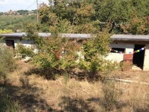 La casa per le mucche, che stiamo approntando presso Agripunk Onlus.